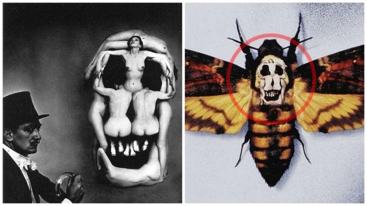 moth-in-voluptus-mors