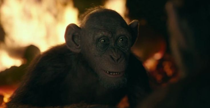War-for-the-Planet-of-the-Apes-Trailer-2-7